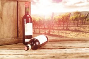 Wein und Speisen. EinfachWein